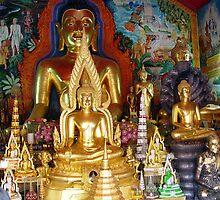 Buddhas Temple by Feesbay