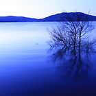 blowering dam in blue by jade adams