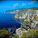 Bella Panorama .	 Cape Keri . Zakynthos . Greece.  Fujichrome Velvia 50 Slide Film  .  by Brown Sugar . Featured * Thanks so much !!! views (273)  favorited by (2)Thank you friends ! by AndGoszcz