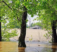 Flood waters in Arkansas by Susan Blevins