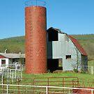 Working Dairy Barn  by David  Hughes