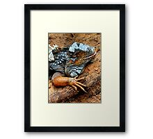 Captivated creature Framed Print