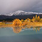 Tekapo Alight by Chris Gin