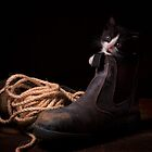 Puss In Boots by Bill Gekas