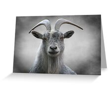 Old Goat Greeting Card