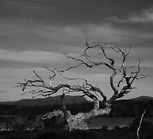 Lake Windermere spirit #2 by phillip wise