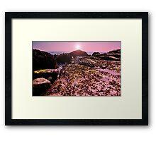 seaweed on the Rocks! Framed Print
