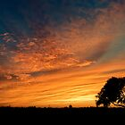 Fire in the sky by pacoespinoza