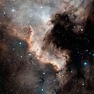North America Nebula by StocktrekImages
