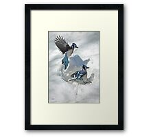 Those Were The Jays Framed Print