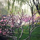 peach blossom by fRantasy