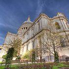 St Pauls by Mike Matthews