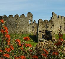 Restormel Castle by lightmonger