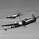 A P-38 Lightning &amp; P-51D Mustang by StocktrekImages