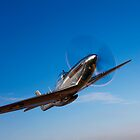 P-51D Mustang by StocktrekImages
