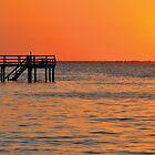 Bokeelia Pier by jaeepathak