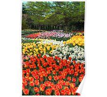 Botanical Garden Poster