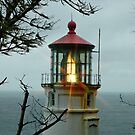 Heceta Head Lighthouse 4 by Nick Boren
