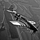 P-51C Mustang by StocktrekImages