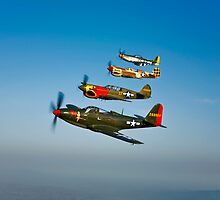 Classic Warbirds by StocktrekImages