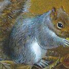 Portrait of a grey squirrel by Sarah Trett