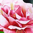 Rose Petals - vibrant oil painting of an English rose by James  Knowles