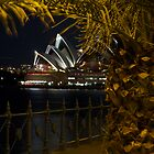 The Sydney Opera House in Evening Splendor by normanorly