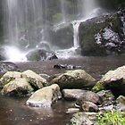 Waterfall near Flea Bay - Banks Peninsular Track - New Zealand by Ruth Durose