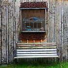 Trampers' Hut - Banks Peninsular, New Zealand by Ruth Durose