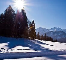 Snowscape II by Richard Downes