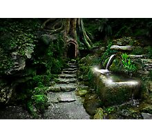 Entrance to Rivendell Photographic Print
