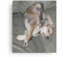 sure i can sleep like this!! Metal Print