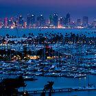 San Diego Skyline w/ Marina by camfischer