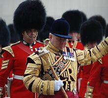 Wedding guard by justbmac