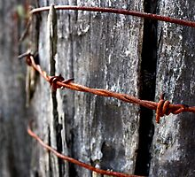 Rust in Peace - HILL END NSW by Ian Ramsay