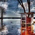 Black Lake in Spring II  by Joseph T. Meirose IV