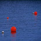 The buoys are out to play... Flinders, Mornington Peninsula by Megan Gardner
