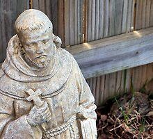 St. Francis & Friend by Brian Gaynor
