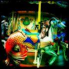 Carousel by Cara Gallardo Weil