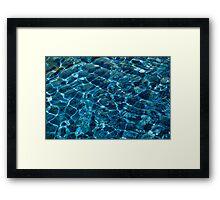 Penguin Pool I Framed Print
