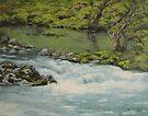 River Moods by Karen Ilari