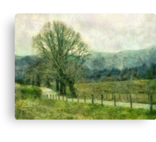Hyatt Lane Canvas Print