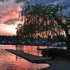 Lake Sunset - Lake Stevens Wa by Robert  Miner