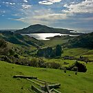 Neglected gate - Otago Peninsula, New Zealand by Phil McComiskey