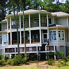 "Daufuskie Island Beach House by Christine ""Xine"" Segalas"