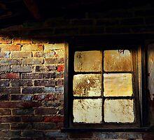 Evening light by Geraldine Lefoe