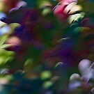 Autumn delight #04 by LouD
