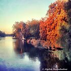 Autumn by the Swan River by AlyZen