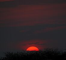 Sunset Through Smoke, Serengeti, Tanzania by Carole-Anne