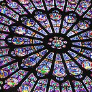 Rose Window II - NOTRE DAME DE PARIS by Jamie Alexander